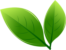 Forno Lo Conte - azienda green